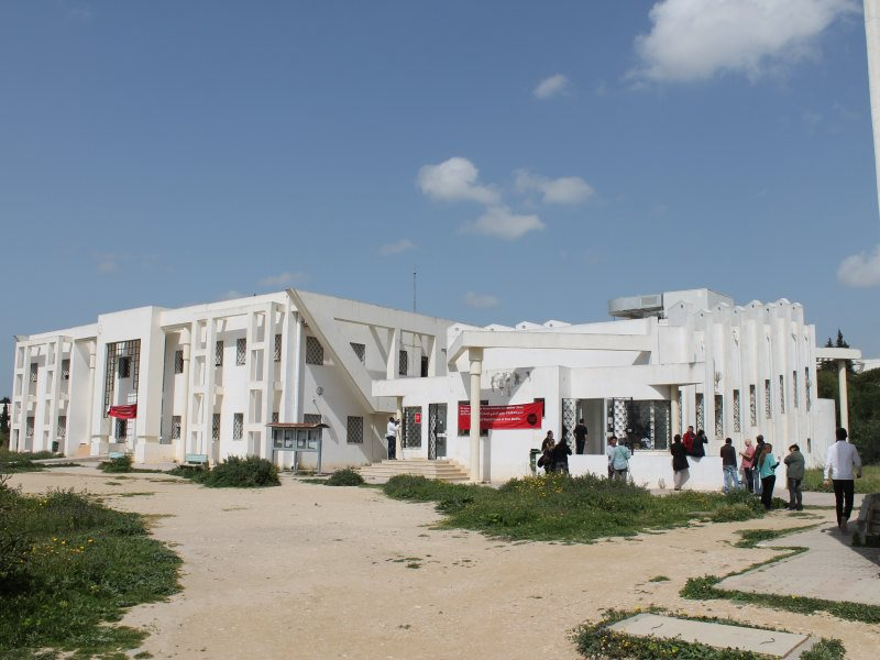 WSF Free Media Tunis 2013 c